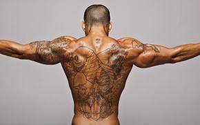Wallpaper muscle, relief, tattoo, tan, tattoo, back, male, fish