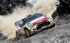 Picture Auto, Dust, Sport, Machine, Citroen, Skid, Day, Citroen, DS3, WRC, Rally, Rally