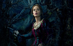Picture Girl, Fantasy, Nature, Sky, Beautiful, Darkness, Blue, the, Night, Emily Blunt, Wallpaper, Family, Eyes, Woman, …