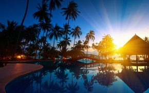 Picture trees, bridge, nature, palm trees, Paradise, Sunrise, Thailand, Thailand, trees, nature, bridge, Sunrise, paradise, palms, …
