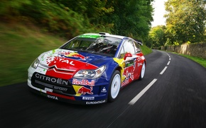 Picture Road, Speed, Citroen, Car, Red Bull, Rally, The front, S. Loeb