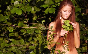Picture greens, leaves, girl, branches, foliage, hair, body, brown hair, jasmine