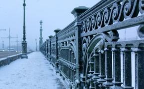 Picture winter, bridge, the city, frost, Saint Petersburg, bridge, winter, St.Petersburg, Trinity
