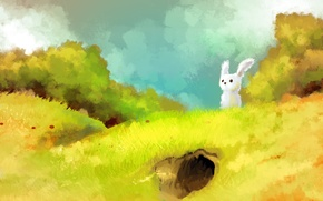 Picture grass, hare, Nora, art, hill, animal