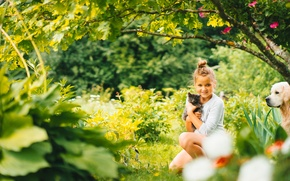 Picture dog, girl, mood, nature, kitty, friends