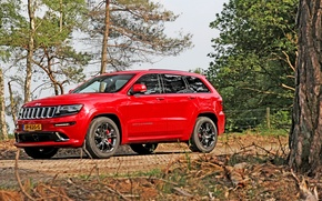 Picture Red, Car, SRT, Jeep, 2013, Grand Cherokee, Metallic