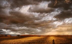 Wallpaper clouds, Field, shadow