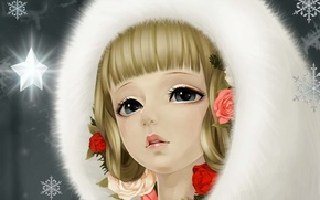Picture snowflakes, lights, star, roses, Girl, fur, art, dong xiao