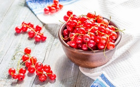 Picture berries, red, currants