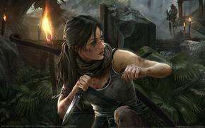 Picture bridge, weapons, jungle, knife, Tomb Raider, Lara Croft, torches, Stealth, game wallpapers, Lara Croft, Tomb …