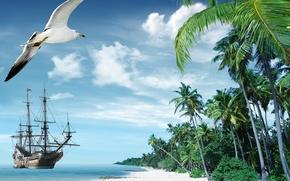 Picture sand, sea, beach, tropics, palm trees, shore, ship, island, summer, beach, sea, ocean, paradise, vacation, …