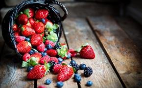 Wallpaper berries, raspberry, blueberries, strawberry, BlackBerry, strawberry, blueberry, berries, raspberry, BlackBerry