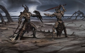 Picture weapons, sword, wars, shield, the fight, Skyrim, concept art, The Elder Scrolls V