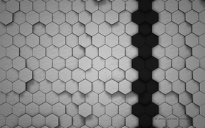 Picture Black, Cell, Grey, Abstraction