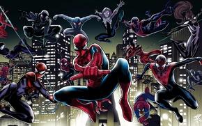 Picture spider man, spider verse, spider gwen