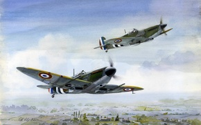 Picture figure, Spitfire, flight, art, British, fighters, Free French