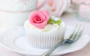 Picture dessert, plug, plate, rosette, cream, cake, food, cupcake, dishes