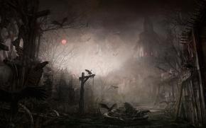 Wallpaper Diablo III, crows, the ruins, the city, night