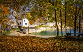 Picture autumn, forest, bridge, lake, house, Park, table, bench