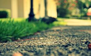 Picture road, greens, grass, asphalt, macro, stones, background, Wallpaper, meadow