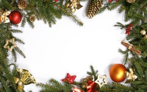 Picture branches, berries, tree, cinnamon, bumps, Christmas decorations