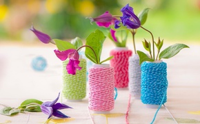 Picture flowers, color, thread, Symphony of Spring