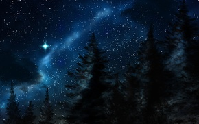Picture winter, night, nature, stars, Forest, tree