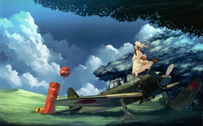 Picture grass, clouds, the plane, tree, the wind, sign, long hair, touhou, art, military, strikingly is …
