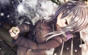 Picture winter, snow, anime