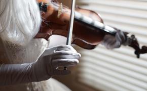 Picture girl, violin, music