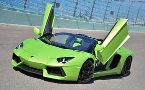 Picture green, Roadster, Lamborghini, track, LP700-4, Aventador, door