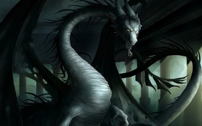 Wallpaper the darkness, evil, wings, dragon