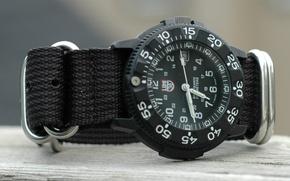 Picture glass, strap, mesh fabric, Luminox watch