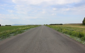 Picture the sky, asphalt, clouds, the way, Road, Forest, Summer, spaces, in the distance, green grass
