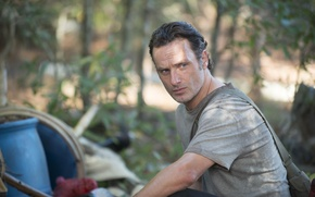 Picture The Walking Dead, The walking dead, Andrew Lincoln, Rick Grimes