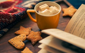 Picture holiday, holiday, heart, winter, star, cookies, book, biscuits, star, cocoa, cup, Cup, food, cocoa, heart, ...