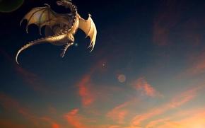 Picture sunset, fantasy, dragon, flight