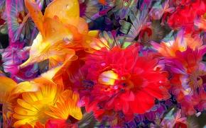 Picture drops, line, flowers, rendering, paint, petals