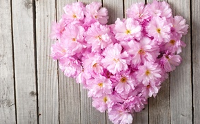 Picture flowers, heart, love, heart, pink, floral