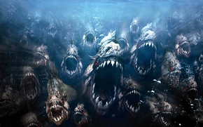 Wallpaper evil, piranhas, fish
