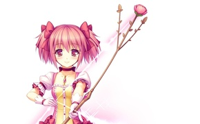 Picture rose, anime, bow, art, girl, Mahou Shoujo Madoka Magica, Girl Madoka