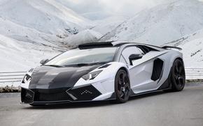 Picture Lamborghini, Aventador, Mansory