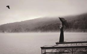 Picture umbrella, girl, flight, bird