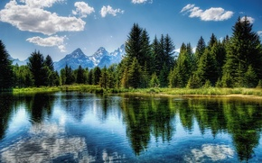 Wallpaper green, reflection, trees, lake, 156, the sky, blue, clouds