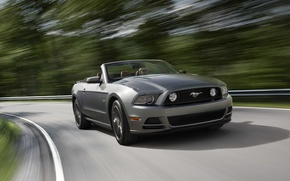 Picture road, speed, ford mustang
