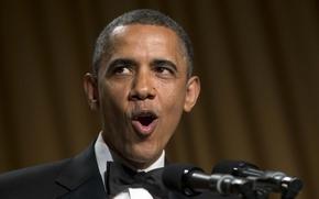 Picture face, background, USA, Barack Obama, Barack Obama, the President.USA