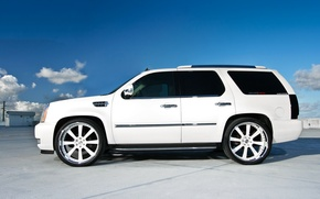 Picture roof, white, profile, Parking, white, wheels, drives, Cadillac, cadillac, escalade, the Escalade