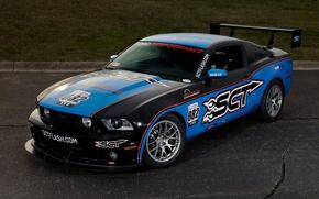 Picture Mustang, Ford, Motorsport, Stinger