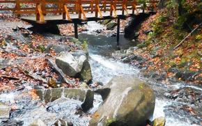 Picture stones, The bridge, autumn leaves, mountain stream