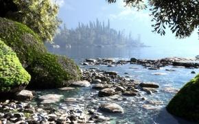 Picture sea, water, trees, nature, lake, stones, island, moss, art